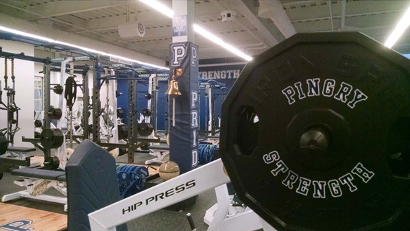 Custom Pingry weight plates on a Hip Press storage horn