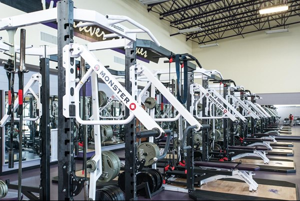 Monster Incline Arms on the Pendulum Dual Racks