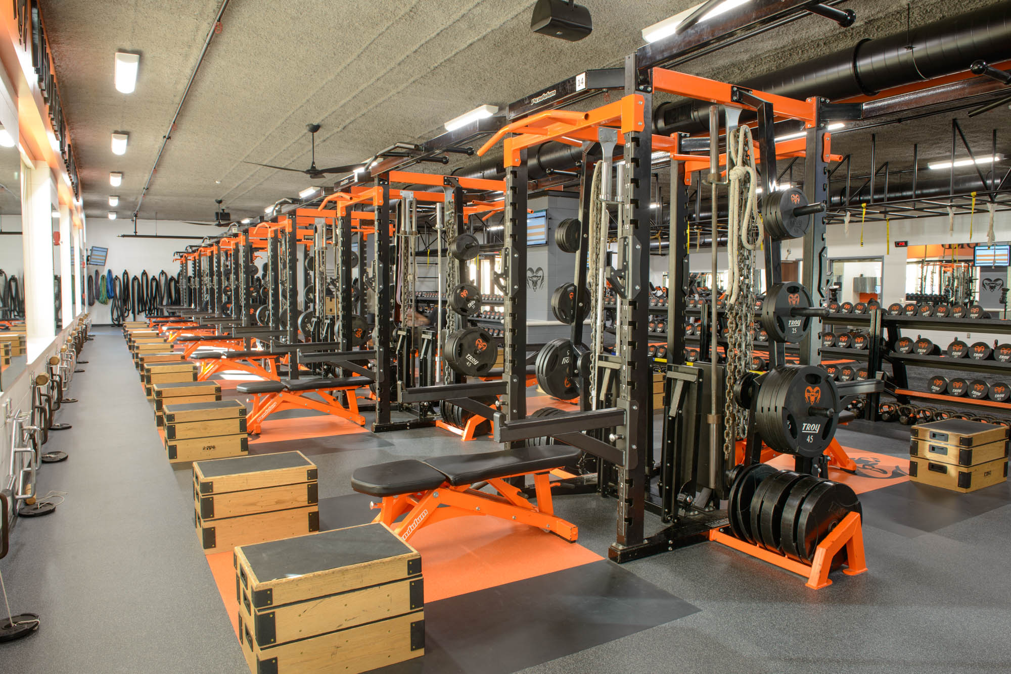Strength Training | Rogers Athletic